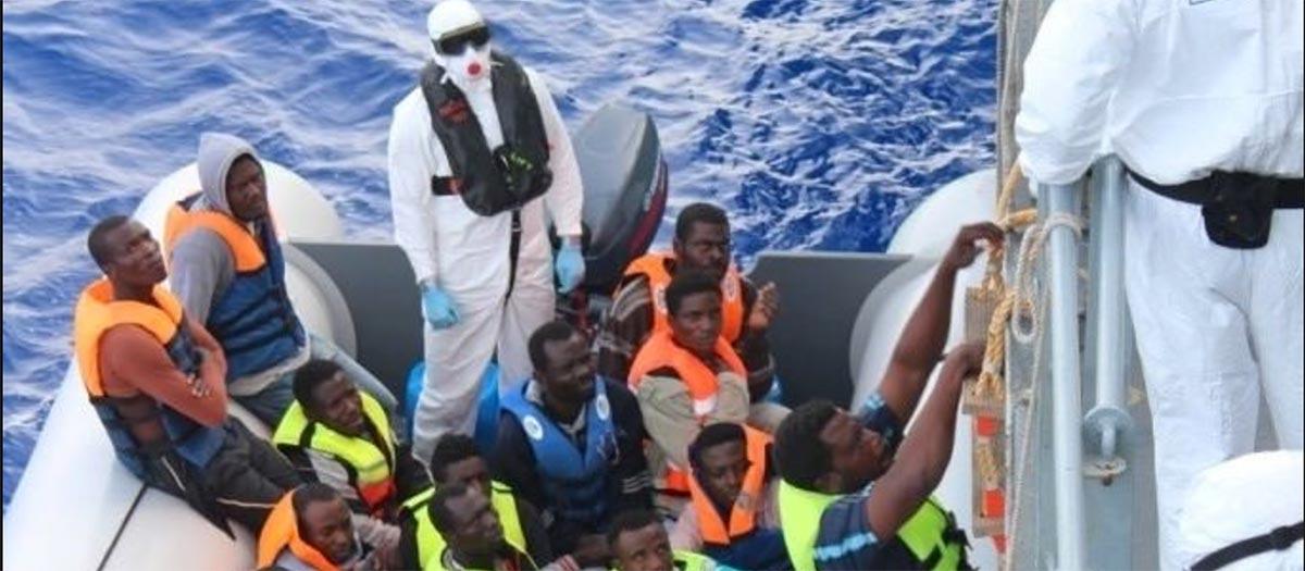 ANALISI ONG NEL MEDITERRANEO: SECONDA PARTE